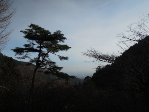 f:id:hiyohiyodori:20150125133854j:image