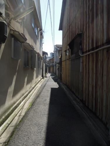 f:id:hiyohiyodori:20150402132158j:image