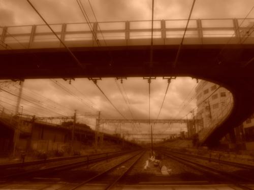f:id:hiyohiyodori:20150606130307j:image