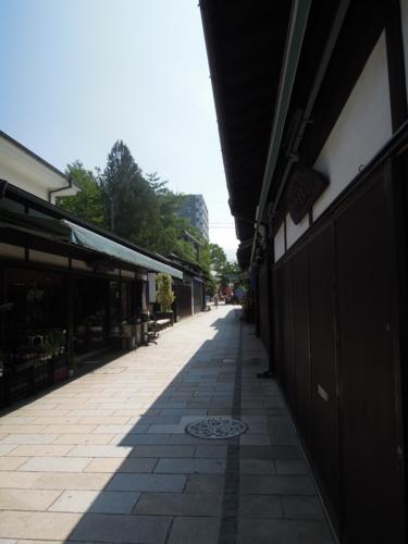 f:id:hiyohiyodori:20150801101133j:image