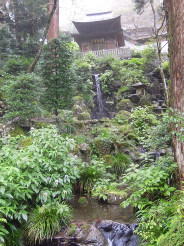 f:id:hiyohiyodori:20150830134350j:image