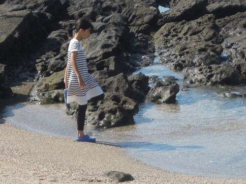 f:id:hiyohiyodori:20150920134639j:image