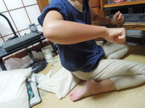 f:id:hiyohiyodori:20151004163553j:image