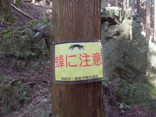 f:id:hiyohiyodori:20151024105943j:image