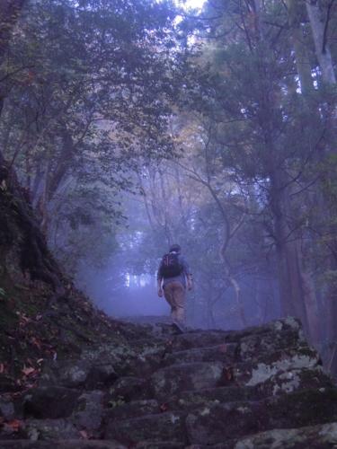 f:id:hiyohiyodori:20151115153652j:image