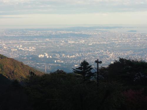 f:id:hiyohiyodori:20151115162030j:image
