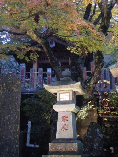 f:id:hiyohiyodori:20151115170503j:image
