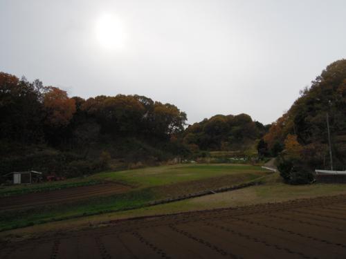 f:id:hiyohiyodori:20151206133928j:image