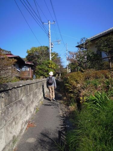 f:id:hiyohiyodori:20151212121355j:image