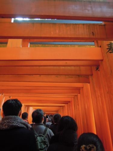 f:id:hiyohiyodori:20160104123204j:image