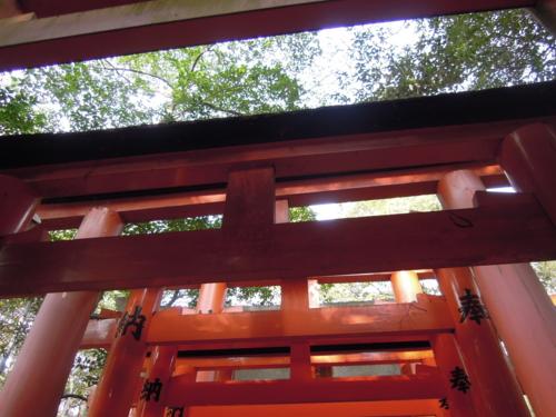 f:id:hiyohiyodori:20160104123548j:image