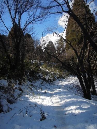 f:id:hiyohiyodori:20160124121500j:image