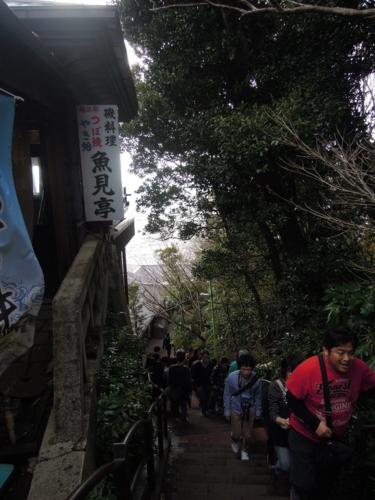 f:id:hiyohiyodori:20160214155636j:image