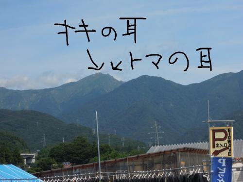 f:id:hiyohiyodori:20160811102018j:image