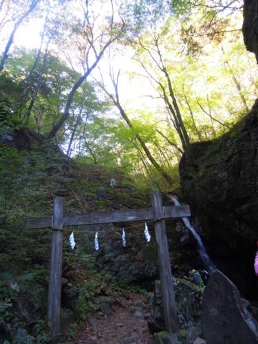 f:id:hiyohiyodori:20161105142711j:image