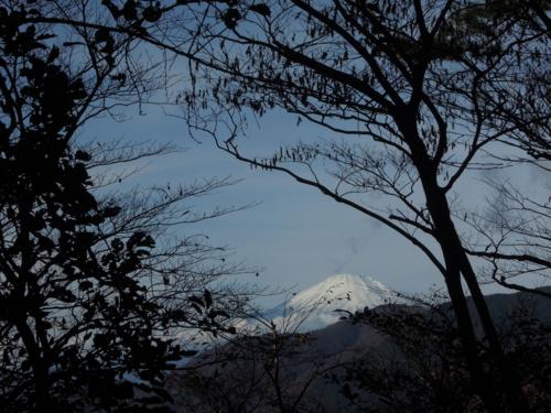 f:id:hiyohiyodori:20161120104804j:image