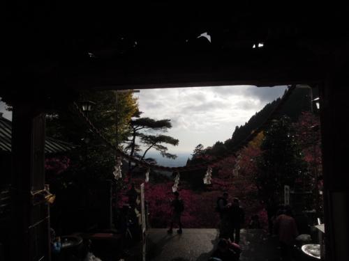 f:id:hiyohiyodori:20161126094217j:image