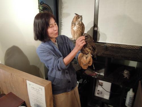 f:id:hiyohiyodori:20170104160628j:image
