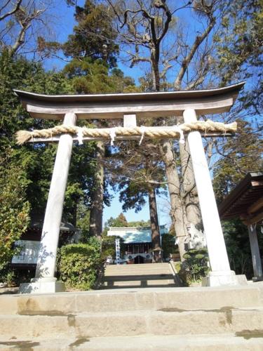 f:id:hiyohiyodori:20170128093412j:image