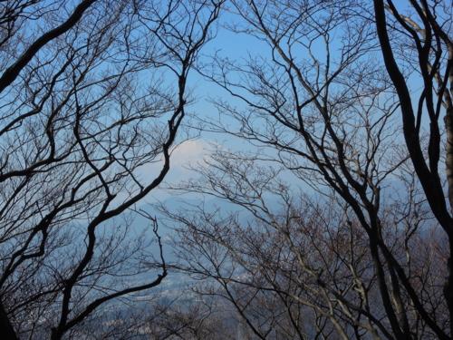 f:id:hiyohiyodori:20170128115844j:image
