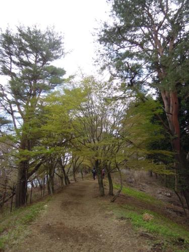 f:id:hiyohiyodori:20170423135103j:image