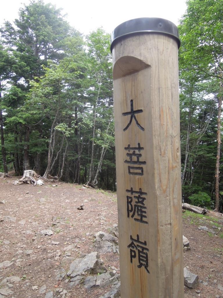 f:id:hiyohiyodori:20180729082342j:plain