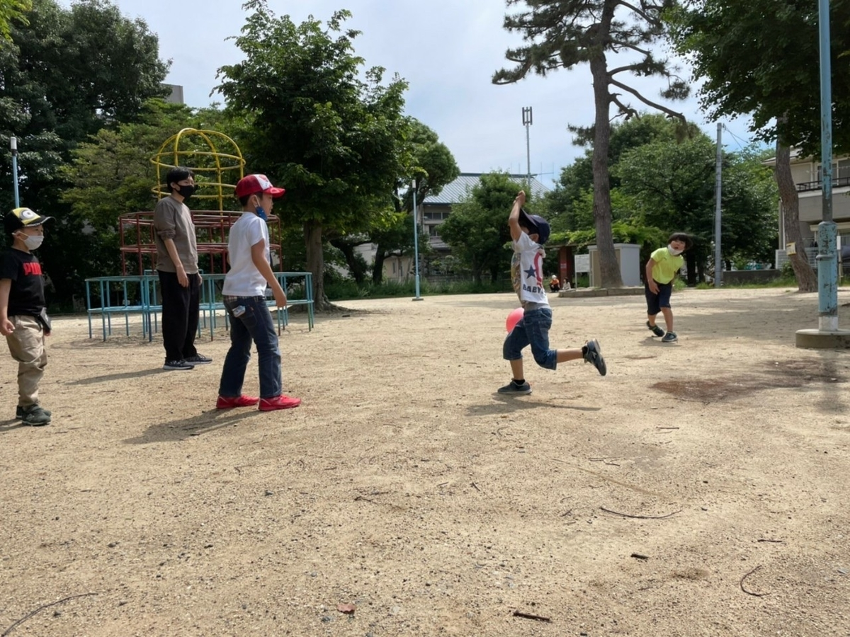 f:id:hiyoko_gakudou:20210705220943j:plain