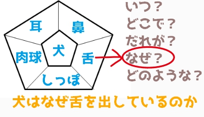 f:id:hiyoko_library:20170302204727j:plain
