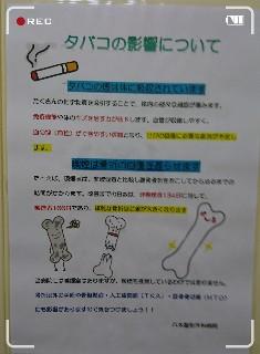 f:id:hizaitako:20191123184250j:image
