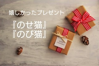 f:id:hizaitako:20191224150434j:plain