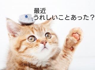 f:id:hizaitako:20200117222302j:image