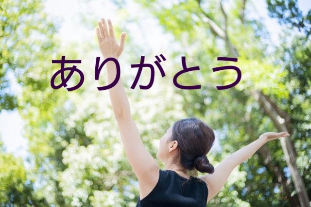 f:id:hizaitako:20200215004926j:plain