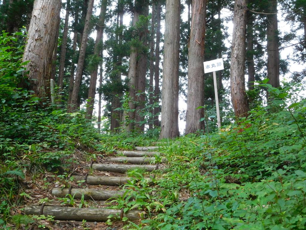 f:id:hm-yamaneko:20180930133500j:plain