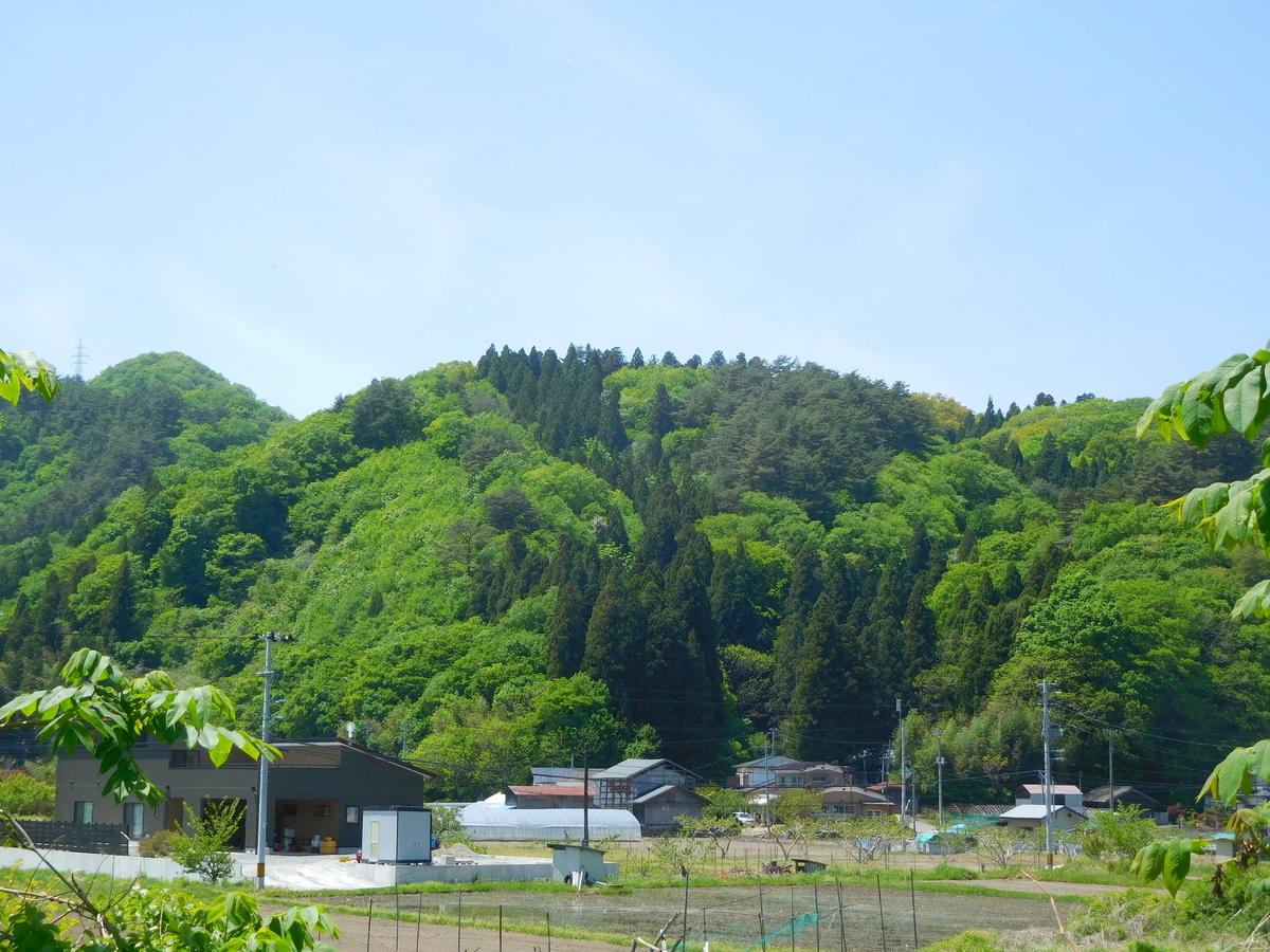 f:id:hm-yamaneko:20210516111242j:plain