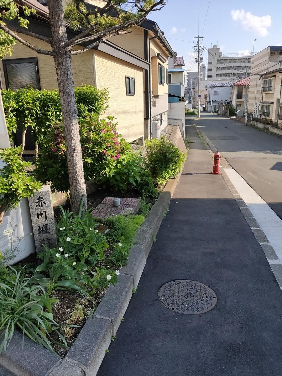 f:id:hm-yamaneko:20210529223507j:plain