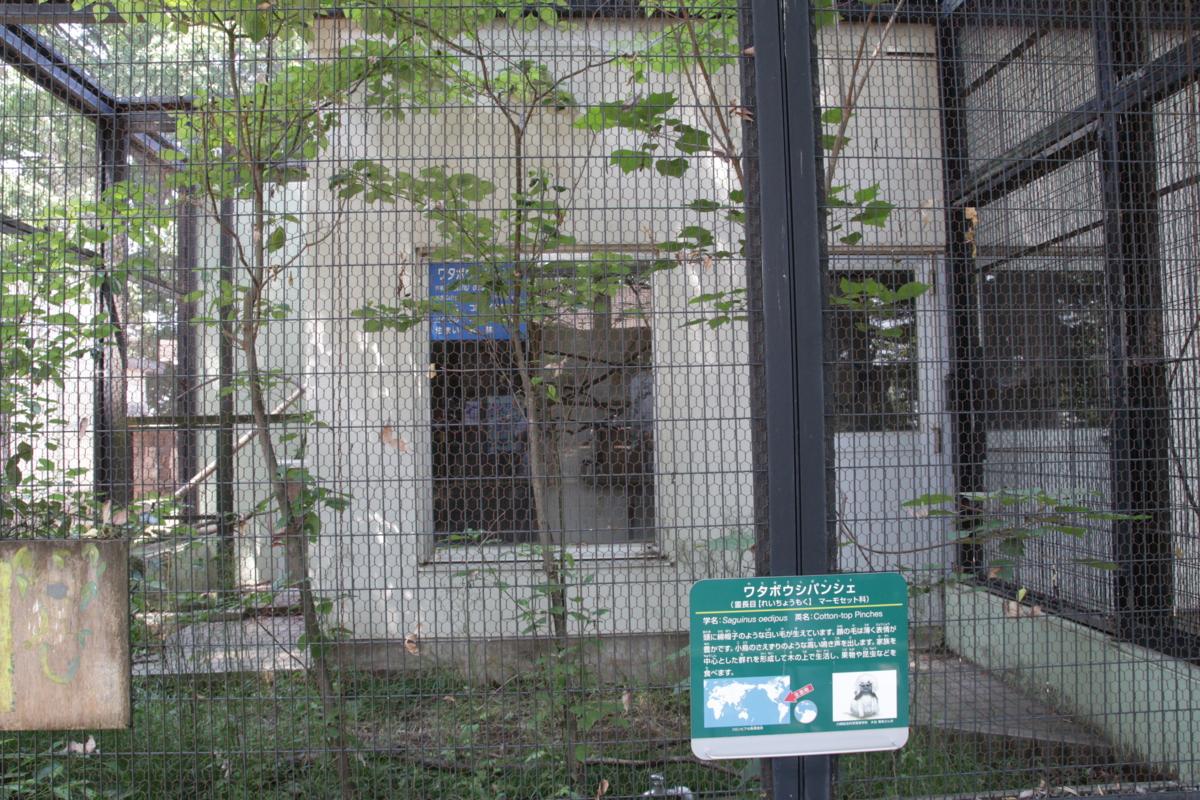 [夢見ヶ崎動物公園][動物園]