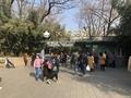 [北京動物園]