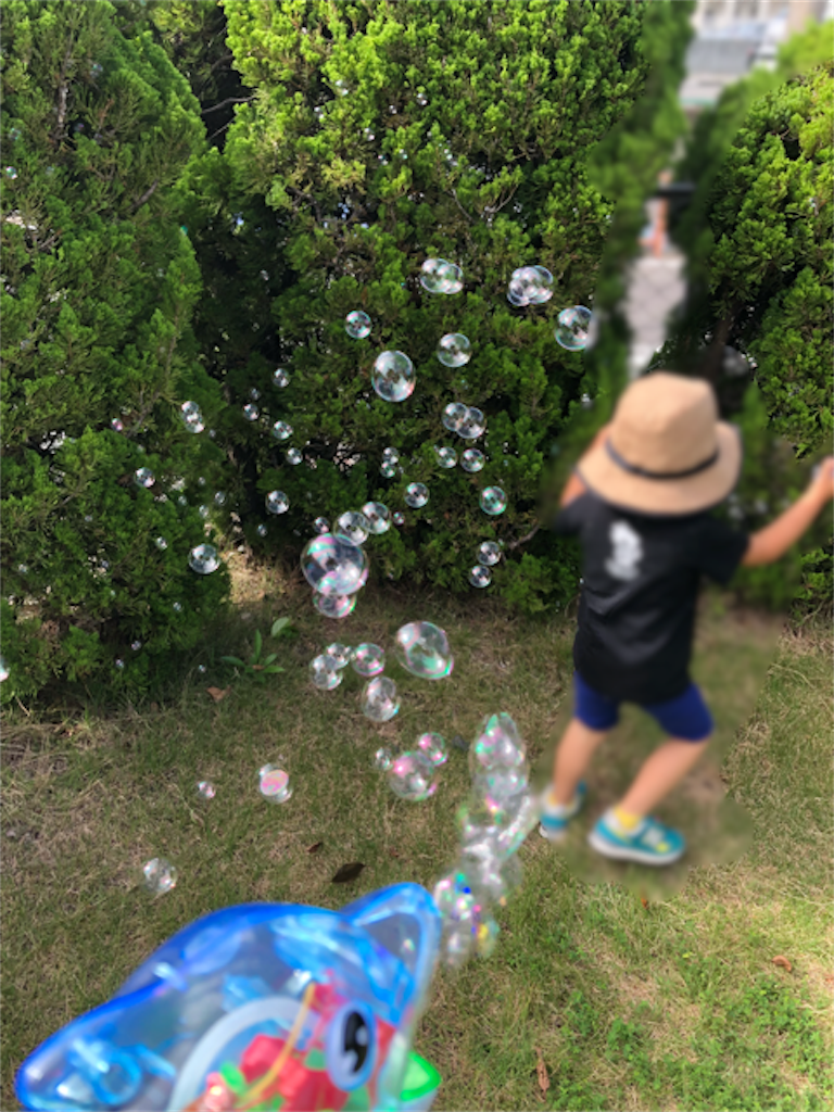 f:id:hoarder:20180726093302p:image