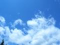 [RICOH GX200]2012年5月23日