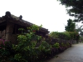 [RICOH GX200]琉球村