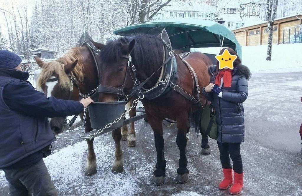 f:id:hobby_is_travel:20181014191710j:plain