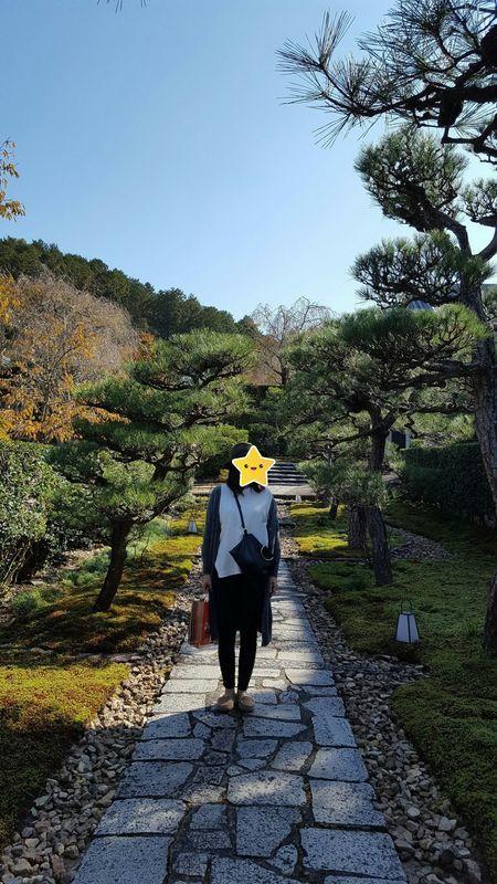 f:id:hobby_is_travel:20181119192754j:plain