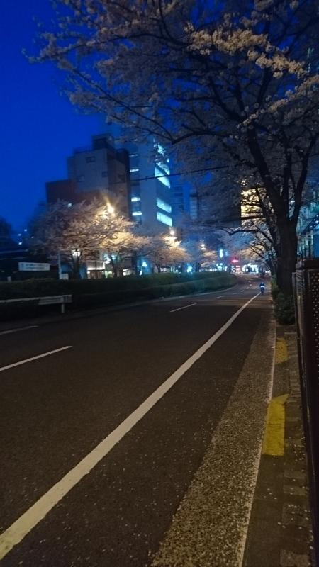 f:id:hogashi:20180329190437j:plain