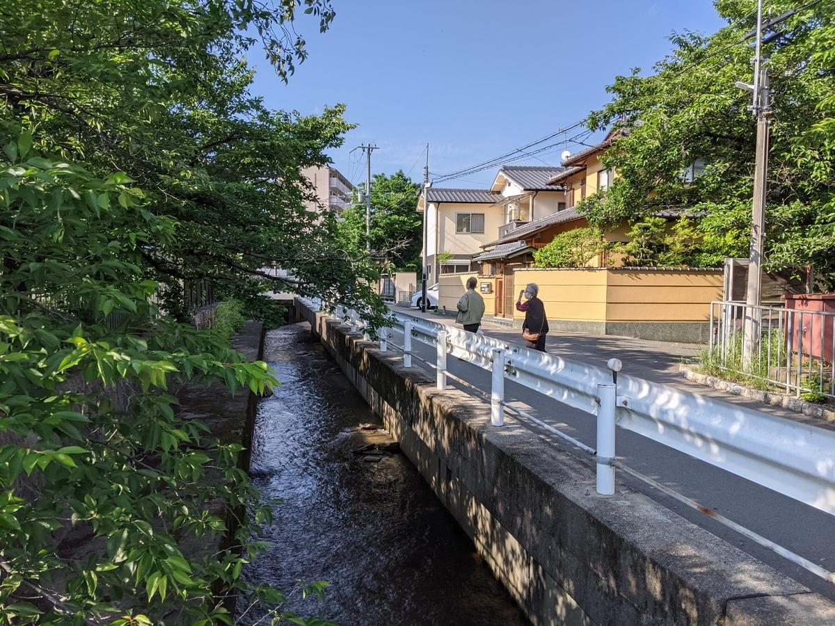 f:id:hogashi:20210530220112j:plain