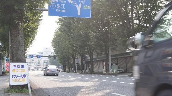 [しずかの山]