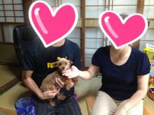 わんこレスキュー・岡山-2013-07-22-07-07-17_deco.jpg