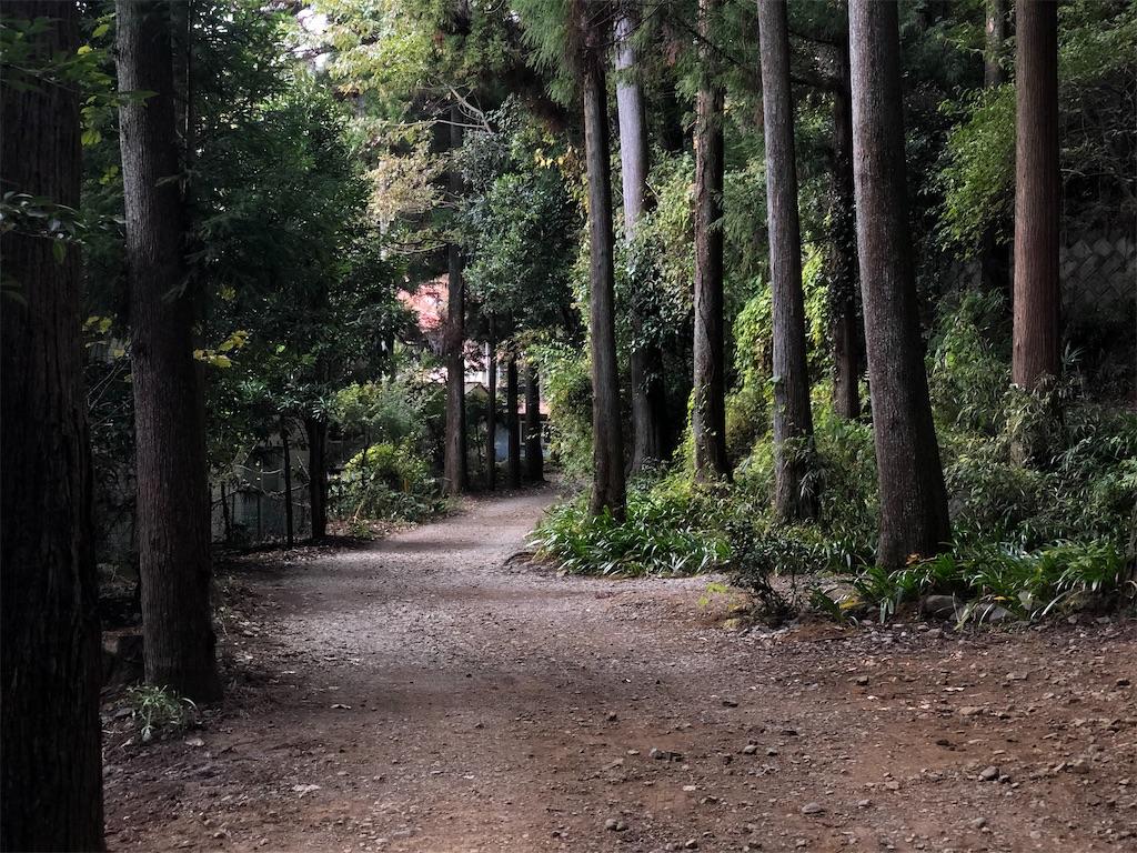 f:id:hojiro:20201120231148j:image