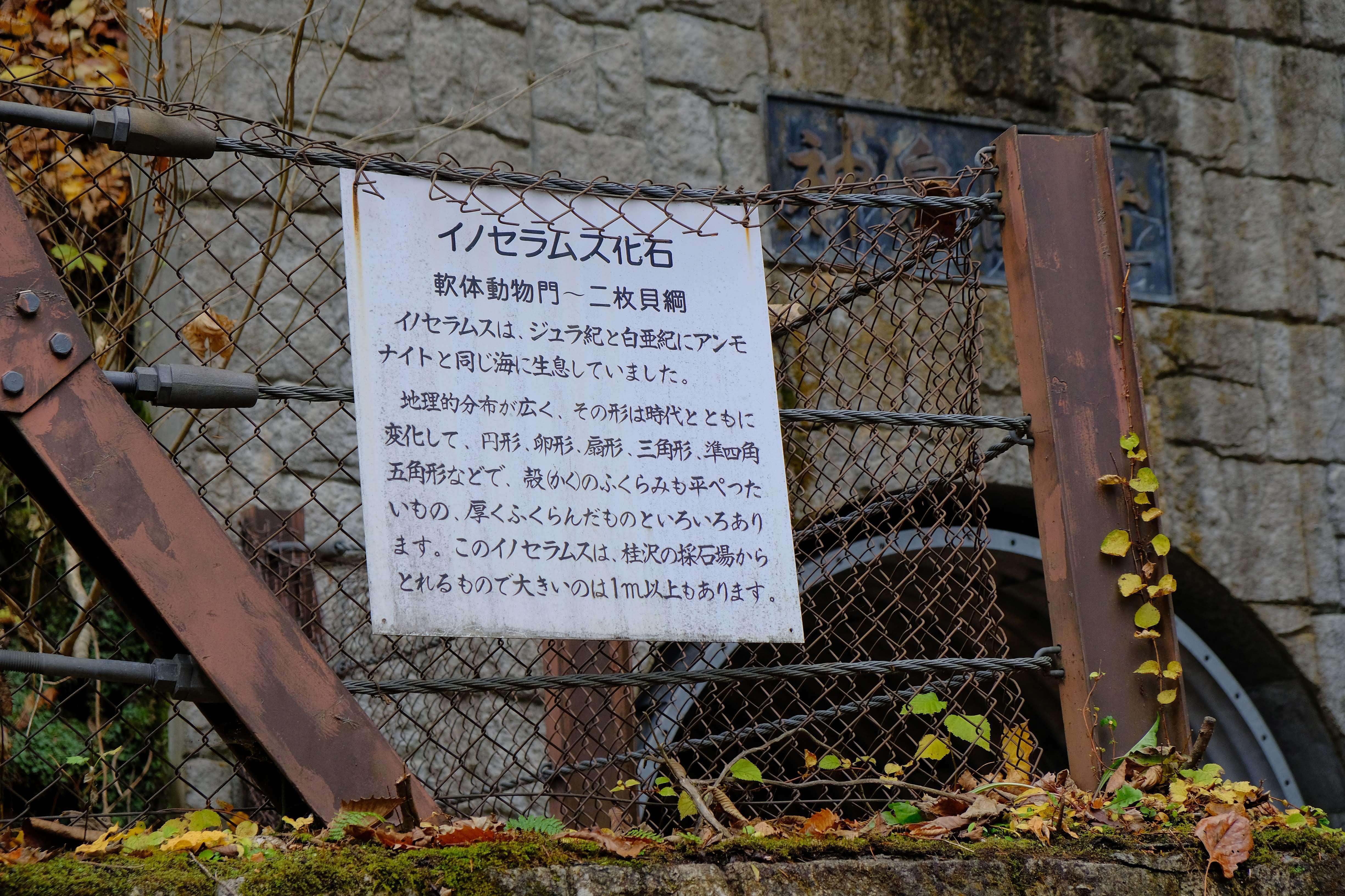 f:id:hokkai-nekotaro:20201110005759j:plain