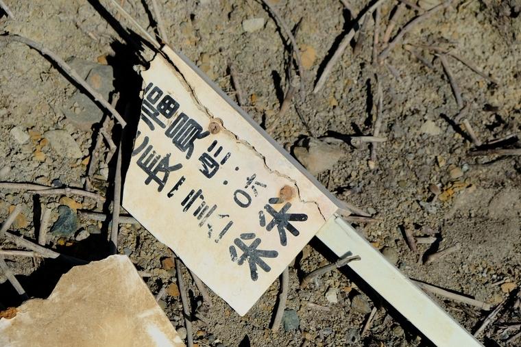 f:id:hokkai-nekotaro:20201111000730j:plain