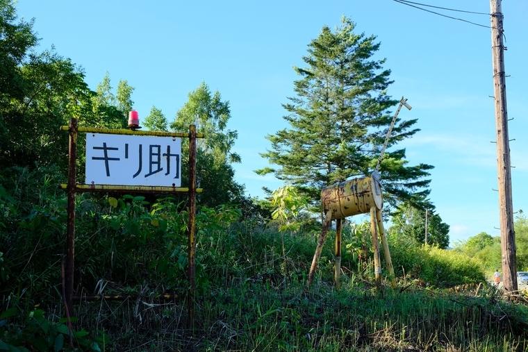 f:id:hokkai-nekotaro:20201228004542j:plain